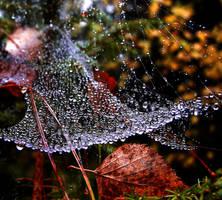 autumn .. by KariLiimatainen