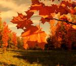 Happy Autumn Days
