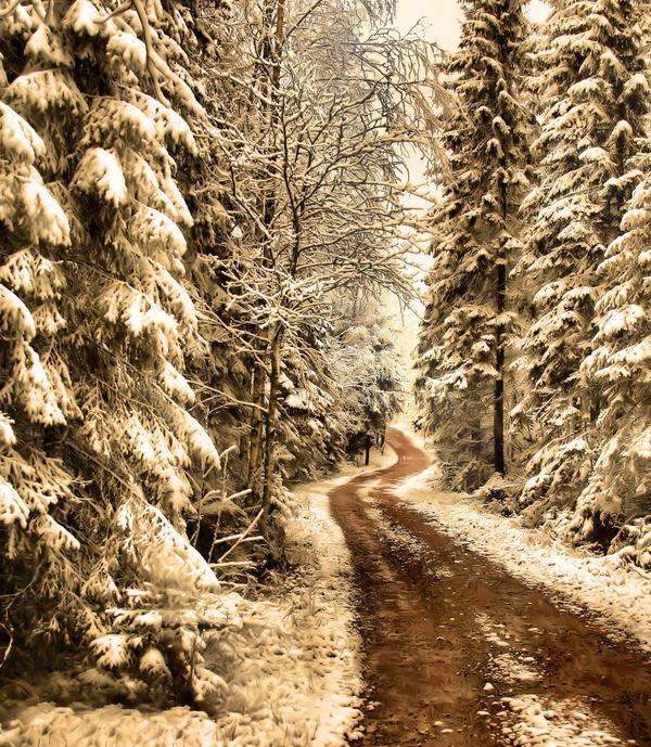 my way by KariLiimatainen