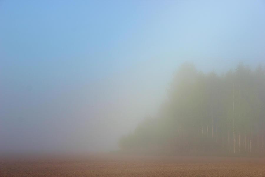 misty field by KariLiimatainen