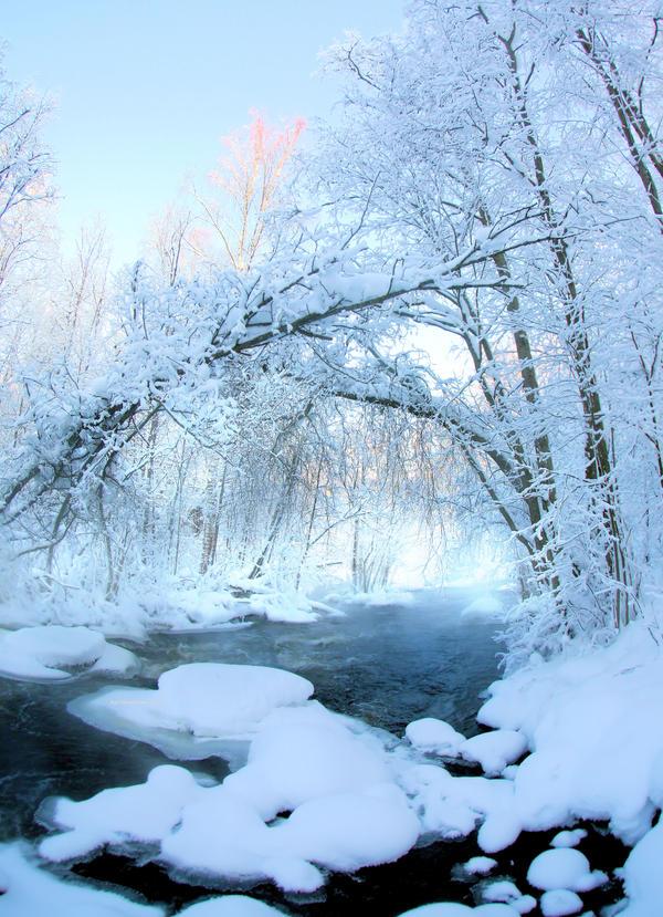 Cold .. by KariLiimatainen