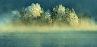 misty winter day