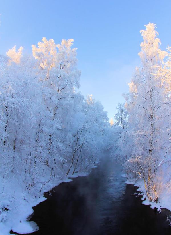 8464 by KariLiimatainen