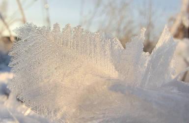 Frozen beauty by KariLiimatainen