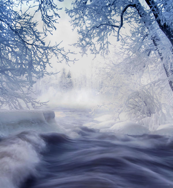 Winter wonderland  .. by KariLiimatainen