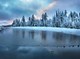 winter beauty by KariLiimatainen