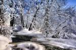 winter beauty in Finland ..