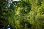 Green river ..