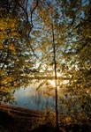 Autumn colours . ...