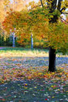 Autumn time..