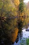 reflection autumn morning