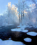 Winter day in Finland