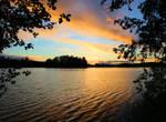 A glimpse into the lake