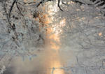 River view in winter