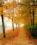 Autumn time in city