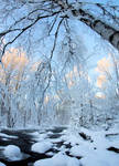 Nice winter day..