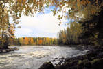 Autumn on the river 2018.