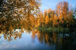 Autumn in Finland ..