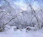 Winter view updated