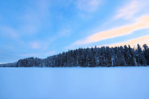 Winter in Finland by KariLiimatainen