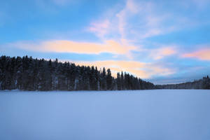 Cold winter morning. by KariLiimatainen