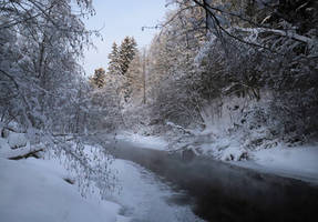 Because now it's winter II by KariLiimatainen