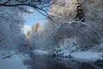 Beautiful winter day..
