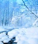 Nice winter moment