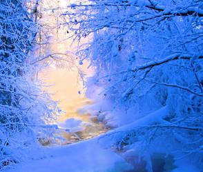Nature lights by KariLiimatainen