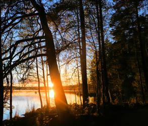 Nice evening view by KariLiimatainen