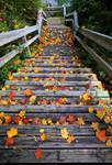 Nice autumn view.