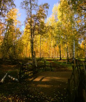 Beautiful autumn park.