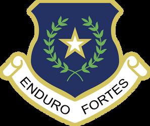 [Reconstruction] Enduro Fortes emblem