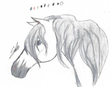 Horse profile 2 by SilverArt100