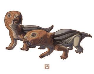 Diictodon feliceps by 0CoffeeBlack0