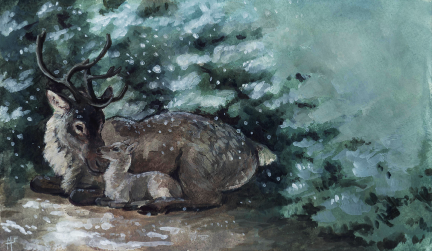 Christmas Card: snuggling deer by Camelid