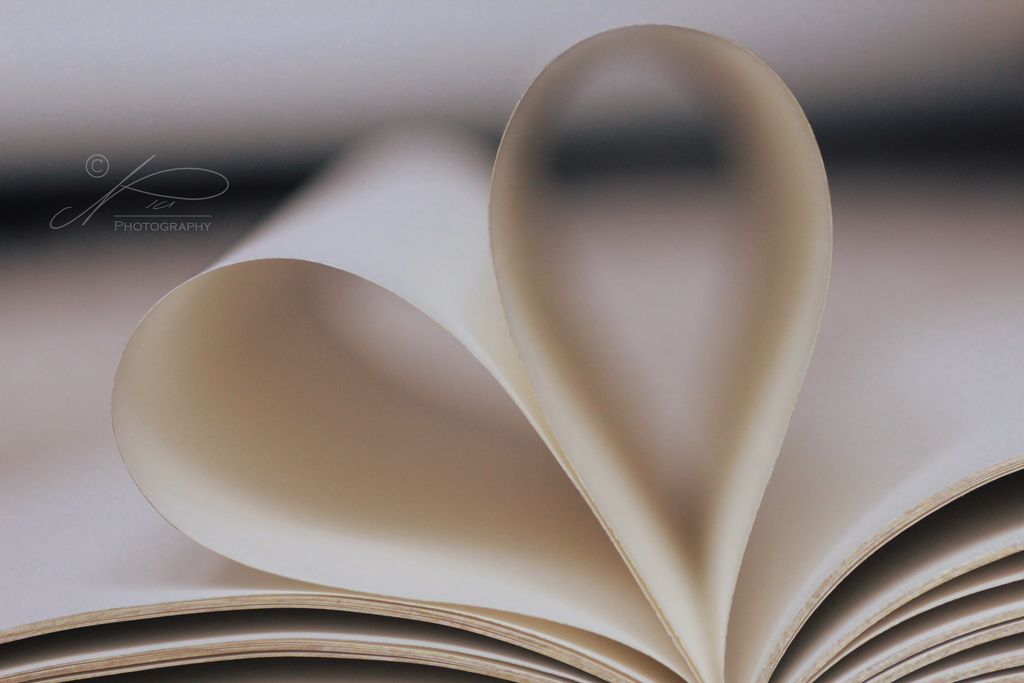 Heart of Books by byNici