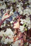.Secret Garden. by Psychosomaticc