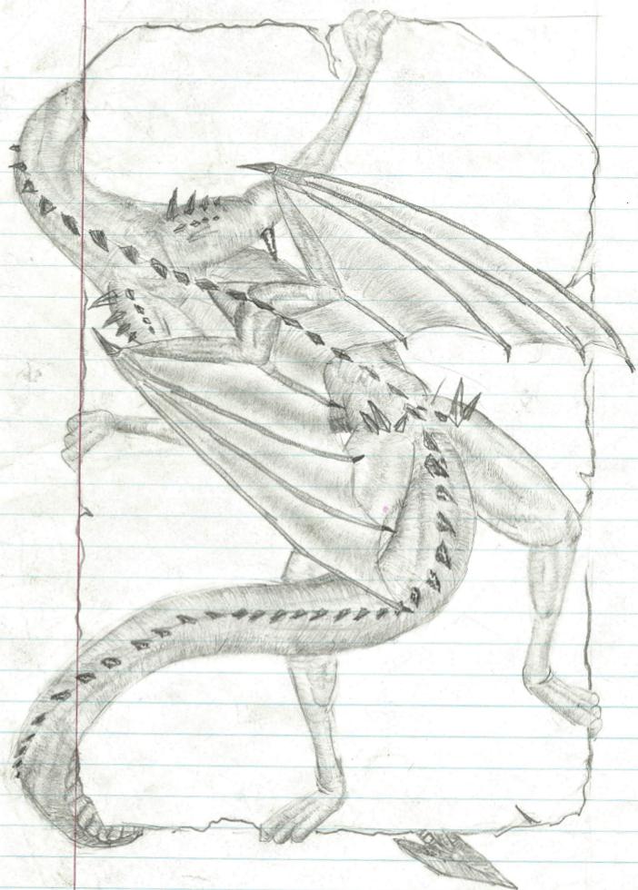 Letter Dragon(back) by sirkles