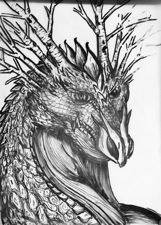 Colorado Dragon by sirkles