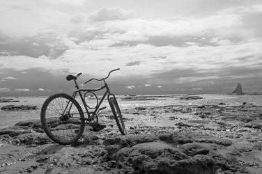 Fisherman's Bike by scastor