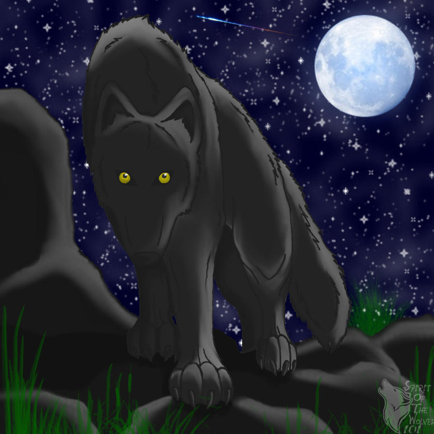 midnight prowl