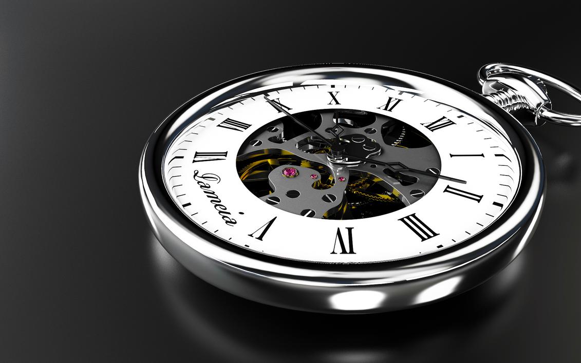 Pocket watch by schdnfr