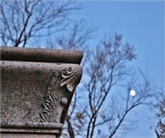 Clinton Grove Cemetery 4