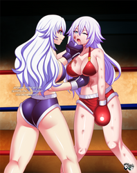 COMMISSION: Hyperdimension Boxing Fight