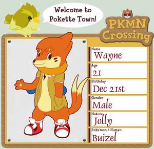 PKMN Crossing - Wayne