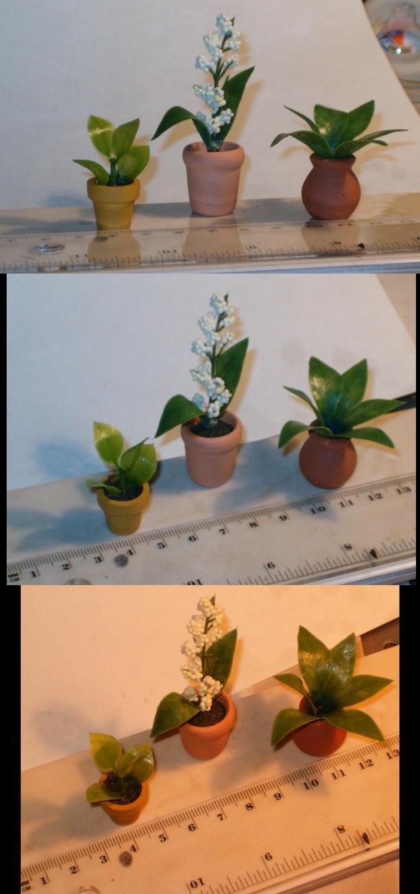 Miniature House Plants By Bloodypopcorn On Deviantart