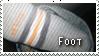 Foot by SpitFire19er