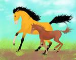 Horses- Ahadi and Uru