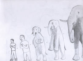 Elephant morph by Mike-Obee-Lay